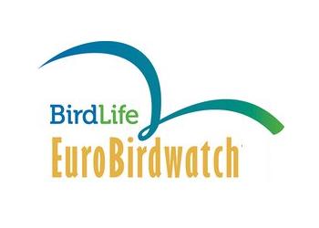 Birdwatch 2019