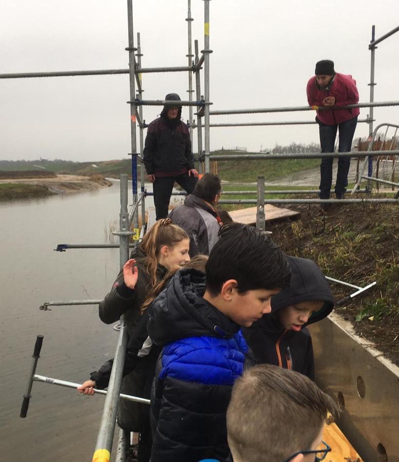 Overzwaluwenwand Crescentpark Harderwijk